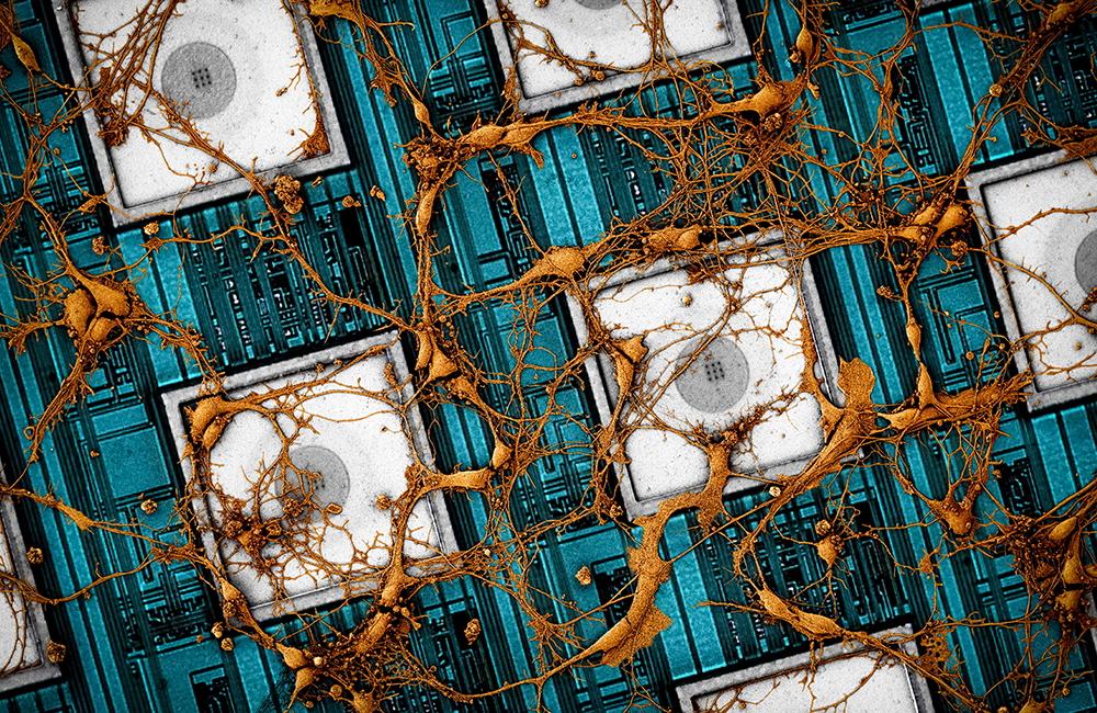 Samsung radi copy paste ljudskog mozga na čip